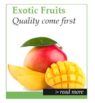 hom-exotic